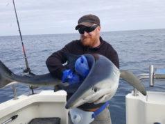 John Dillon mit seinem Blauhai